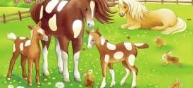 Sanatçı Atlar Orkestrası